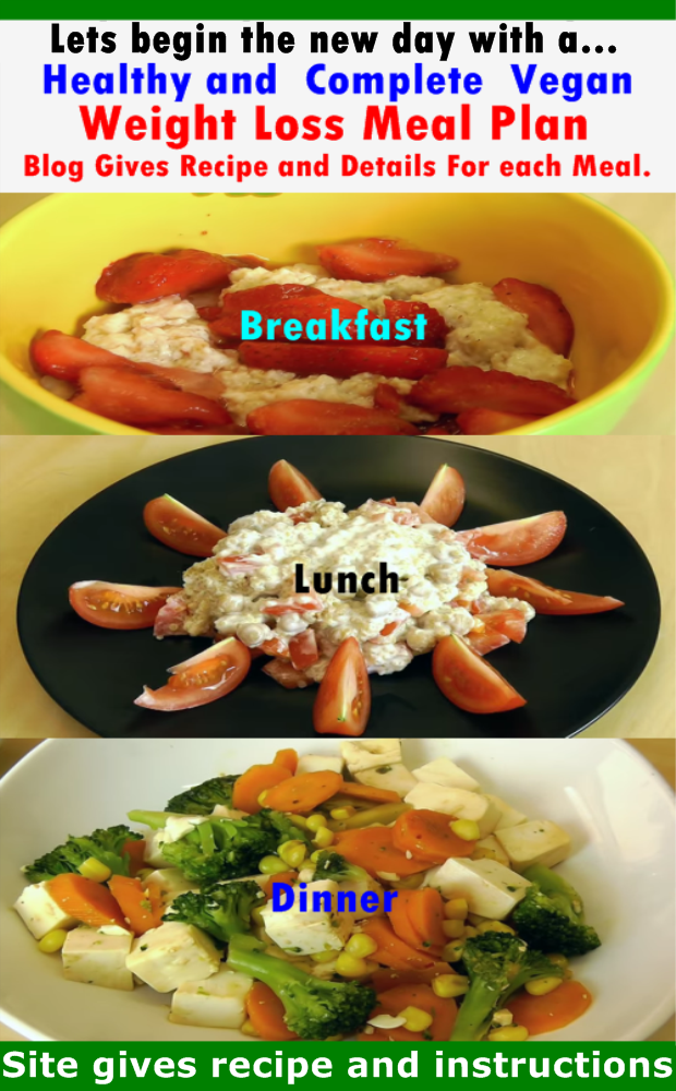 The New Day Complete Vegan Weight Loss Meal Plan